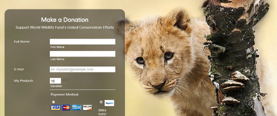 Donation Form For Simba!